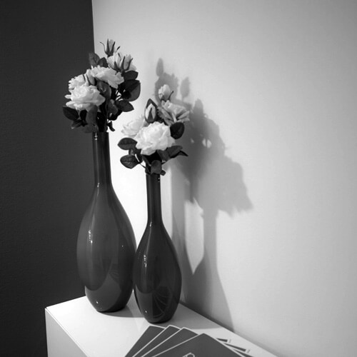 Stil: 2 Vasen mit weißen Rosen. Fotograf: Phil Horn